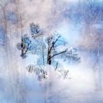 Мечта снежинки. Притча