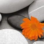 Как поменять свою жизнь. Секрет четырех камней. Притча
