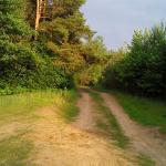 На закате лета: как научиться отдыхать с удовольствием