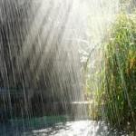 Притча о дожде