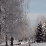 Сказочное зимнее путешествие