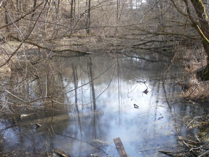 весенняя речка